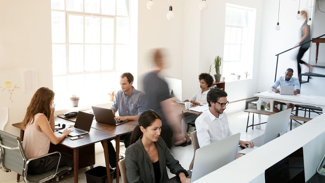 People working in modern ofice