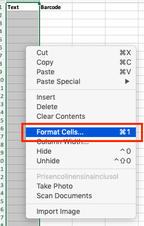 Creating Barcodes in Excel Format Cells
