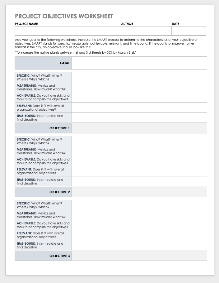Project Objectives Worksheet