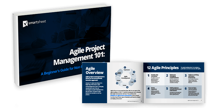Agile PM Ebook