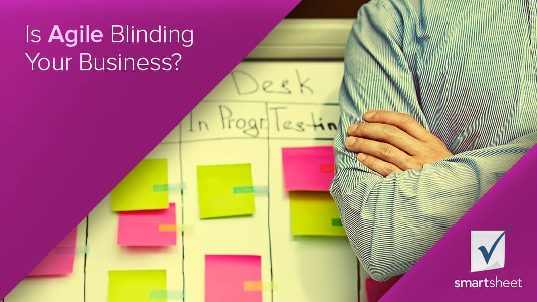Is agile blinding your business?