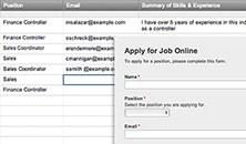 Job Application Web Form Template