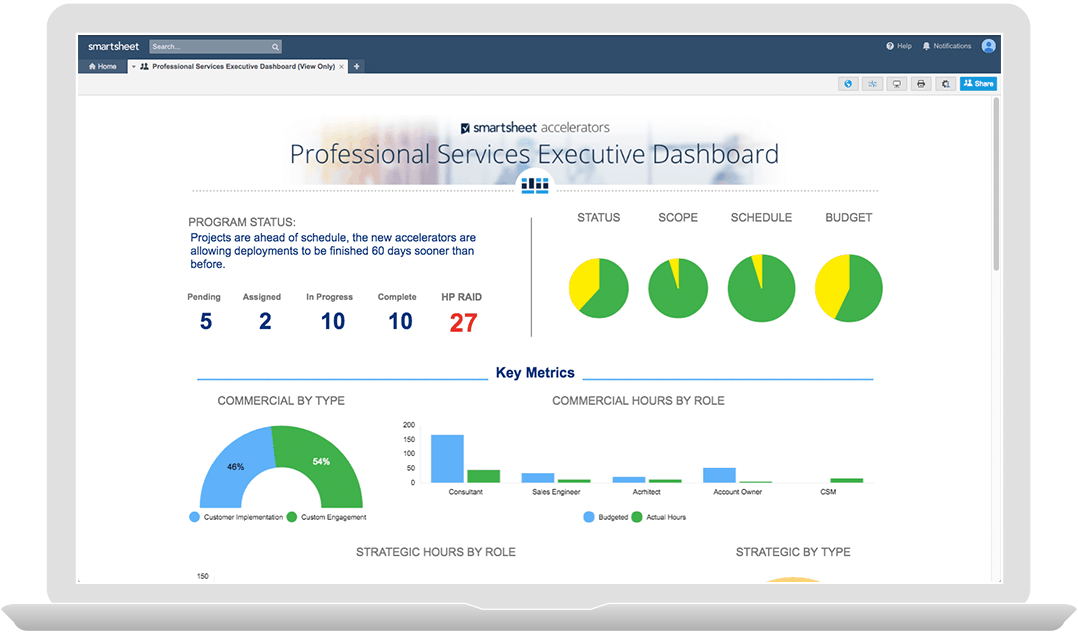 Professional Services Executive Dashboard
