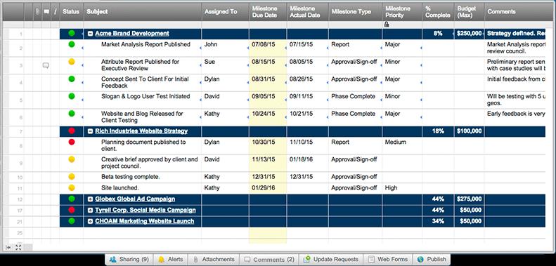project portfolio management 101